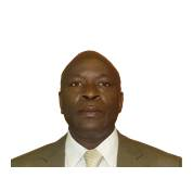 Mr S P Zulu Chief Executive Officer